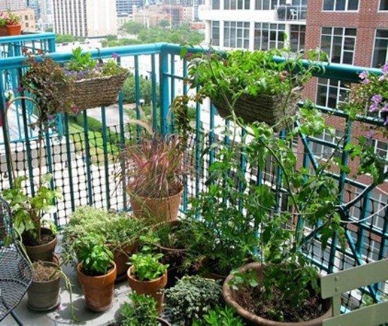 乡村田园风格 花园阳台设计