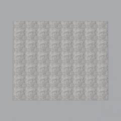 碧桂园雅骏装饰-新风地毯街到临春河步行街图片