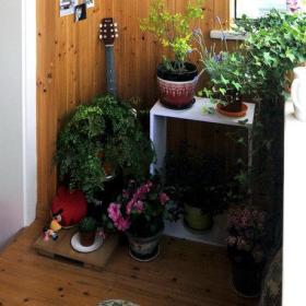 阳台吊顶植物挂画效果图