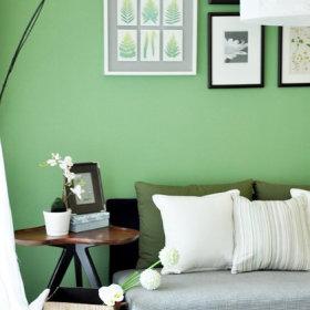 清新简约客厅背景墙沙发客厅沙发设计案例展示