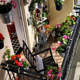 阳台花架装修案例